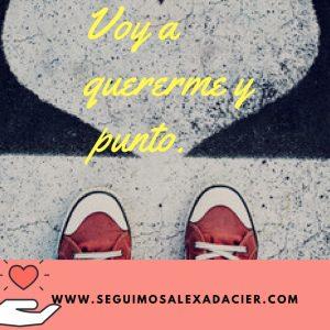 www.seguimosalexadacier.com (6)